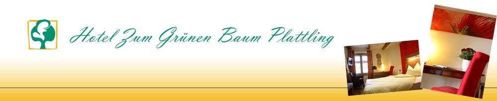 Hotel Zum Grünen Baum Plattling